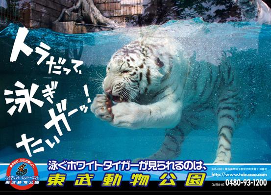東武動物公園<ワンデーパス> ※発券日から1ヶ月有効