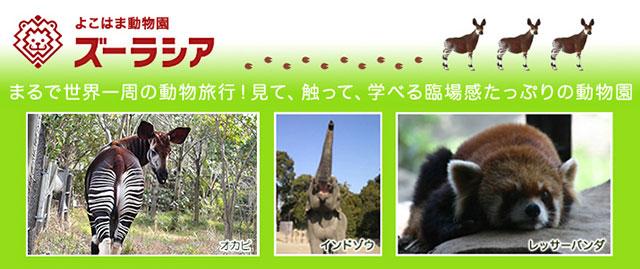 よこはま動物園ズーラシア ※発券日より3ヶ月有効