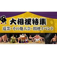 大相撲(巡業・その他大会・関連イベント)