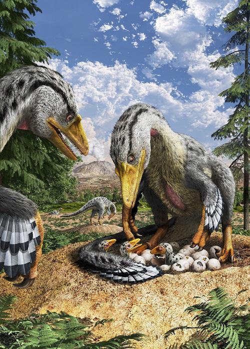 恐竜の卵〜恐竜誕生に秘められた謎〜
