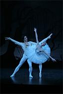 東京バレエ団「白鳥の湖」