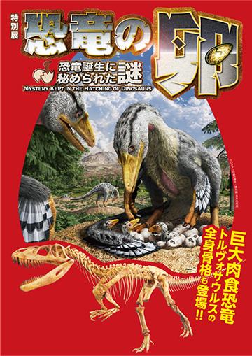 特別展「恐竜の卵 ~恐竜誕生に秘められた謎~」