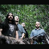 Torche