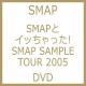 SMAPとイッちゃった! SMAP SAMPLE TOUR 2005