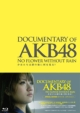 DOCUMENTARY OF AKB48 NO FLOWER WITHOUT RAIN 少女たちは涙の後に何を見る? スペシャル エディション