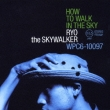 How To Walk In The Sky RYO the SKYWALKER