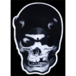 Skull Shaped Picture Disc
