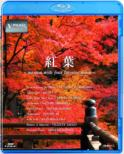 V-Music Momiji -Autumn With Your Favorite Music-