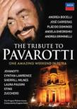 Pavarotti The Tribute Concert-a Celebration Live From Petra