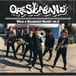 What A Wonderful World! Vol.2 Oreskaband