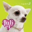 Haru Love 2 (+DVD)[Limited Edition] Juliet