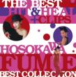 THE BEST HIT & HEAL +CLIPS�`HOSOKAWA FUMIE BEST COLLECTION�`(+DVD)