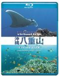 Virtual Trip Okinawa Yaeyama Diving View