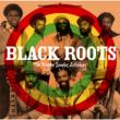 Reggae Singles Anthology Black Roots