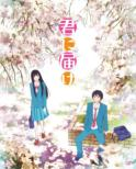 Kimi ni Todoke 1st Season Blu-ray BOX