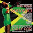 100% Dub Plates Mix Cd Burn Down Style-gully God Mix-