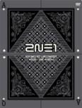 2NE1 1st Concert ' NOLZA!' LIVE in SEOUL