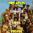 Stoned Soul Picnic