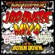 BURN DOWN STYLE -JAPANESE MIX 4-