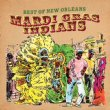 Best Of Mardi Gras Indians