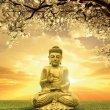 Buddha -Greeting Card 3
