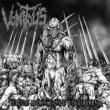 Surgical Abominations Of Disfigurement -mcd-