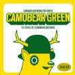 Camobear Green