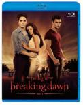 The Twilight Saga: Breaking Dawn Part1