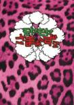 �����������܂��`��2 DVD-BOX(VOL.18�AVOL.19)