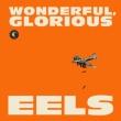 Wonderful, Glorious (10 Inch X 2)
