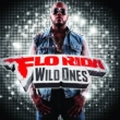 Wild Ones Flo Rida