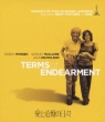 Terms Of Enderment