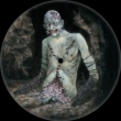 Vile: 25th Anniversary (Picture Disc)