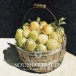Sound Remedy -Folklove-Mixed By Kenichiro Nishihara