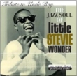Tribute To Uncle Ray / Jazz Soul Of Little Stevie Wonder