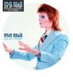 Life On Mars (Picture Disc)