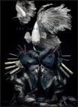 the GazettE live tour 12-13[DIVISION]FINAL MELT LIVE AT 03.10 SAITAMA SUPER ARENA [First Press Limited Edition]
