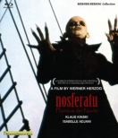 Nosferatu The Vampire