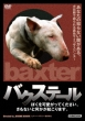 Baxter