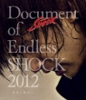 Document Of Endless Shock 2012 -����̕����-