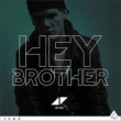 Hey Brother (2tracks)