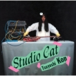 Studio Cat (Rmt)