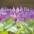 Image 14 Emotional & Relaxing
