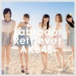 Labrador Retriever [Standard Type A: 1 Photo (Random), AKB48 37th Single Voting Limited Period Serial Card][HMV Original Novelty]
