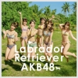 Labrador Retriever [First Press Limited Type K: Random Event Ticket, AKB48 37th Single Voting Limited Period Serial Card]