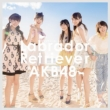 Labrador Retriever [Standard Type B: 1 Photo (Random), AKB48 37th Single Voting Limited Period Serial Card][HMV Original Novelty]