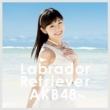 Labrador Retriever [Standard Type 4: 1 Photo (Random), AKB48 37th Single Voting Limited Period Serial Card][HMV Original Novelty]