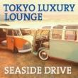 Tokyo Luxury Lounge Seaside Drive
