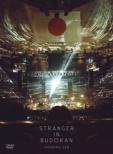 Stranger In Budokan
