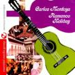 Flamenco Holiday